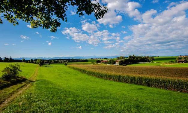 München: Kooperation mit Eigentümern beim Grundstückserwerb
