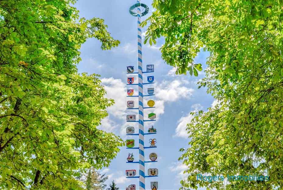 Immobilienmakler München Moosach, Borstei