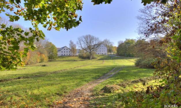 Warum werden Grundstücke nicht zügiger bebaut?