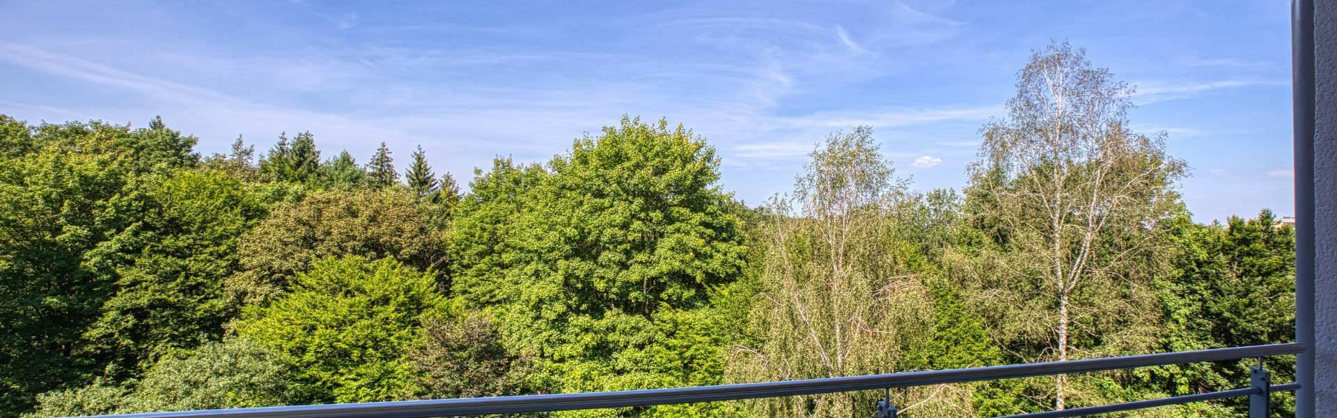 Forstenried Wohnung Blick vom Balkon